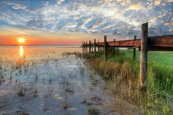 Everglades Photograph - Watching The Sun Rise by Debra and Dave Vanderlaan