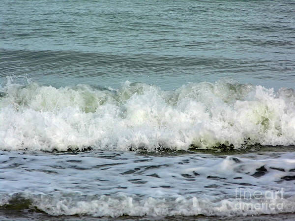 Photograph - Watching The Waves In The Ocean by D Hackett