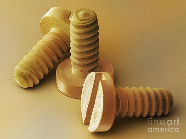 Photograph - Watchmaker's Brass Screws Sem by Power and Syred SPL