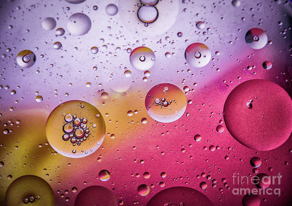 Christmass Photograph - Water And Oil by Catherine Balfe