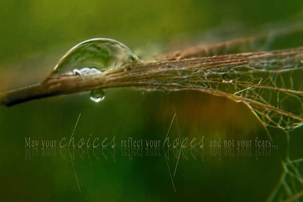 Photograph - Water-drop Reflection Choices Hopes Quote by Christina VanGinkel
