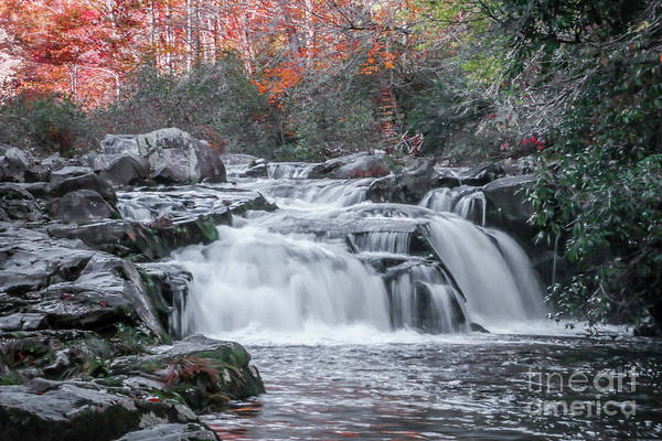 Photograph - Water Fall by Tom Claud