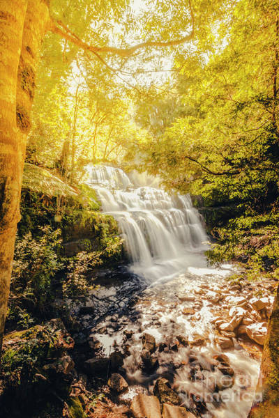 Beautiful Park Photograph - Water In Fall by Jorgo Photography - Wall Art Gallery