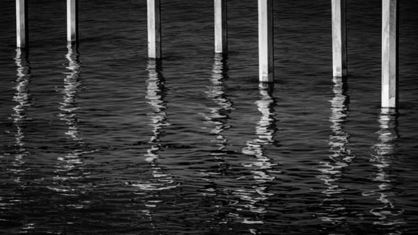 Wall Art - Photograph - Water Legs by Joseph Smith