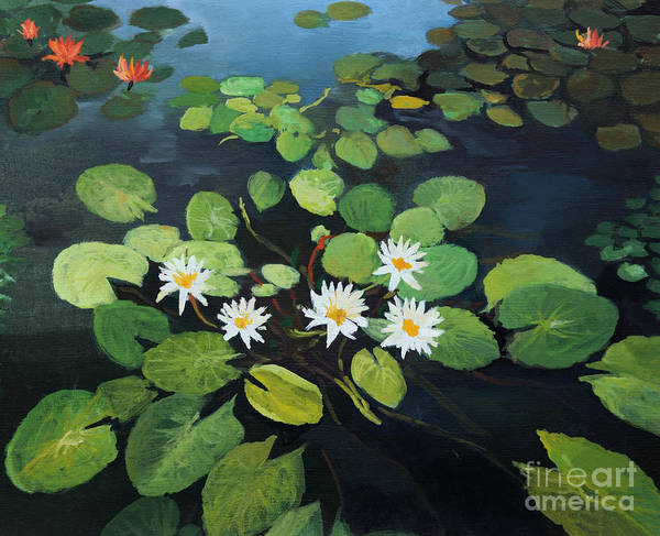 Wall Art - Painting - Water Lilies by Kiril Stanchev