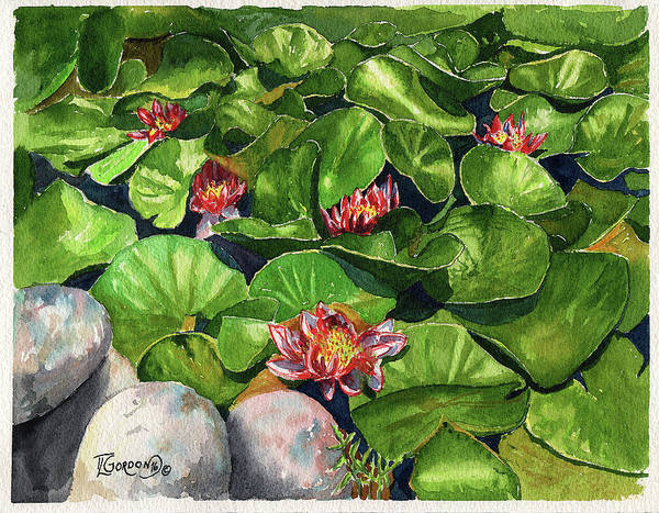 Wall Art - Painting - Water Lilies by Timithy L Gordon