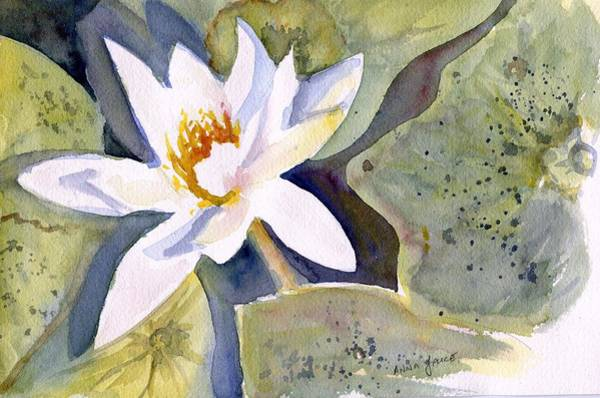 Painting - Water Lily by Anna Jacke