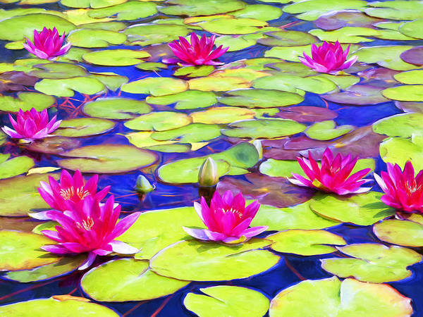 Painting - Water Lily Pond by Dominic Piperata