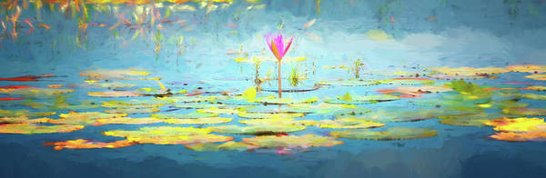 Pink Lotus Flower Photograph - Water Lily - Tribute To Monet by Stephen Stookey
