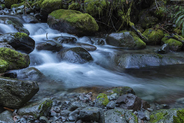 Photograph - Water, Moss And Rocks by Belinda Greb