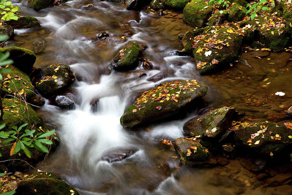 Photograph - Water Over Rocks by Jill Lang