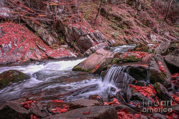 Photograph - Water Over The Rocks by Tom Claud