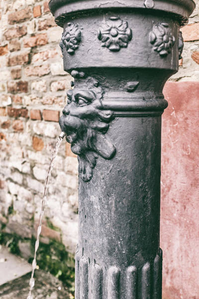 Photograph - Water Pump In Venice by Georgia Fowler