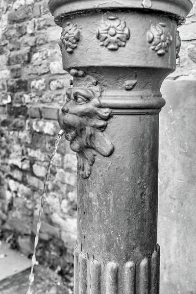 Photograph - Water Pump In Venice - Mono by Georgia Fowler