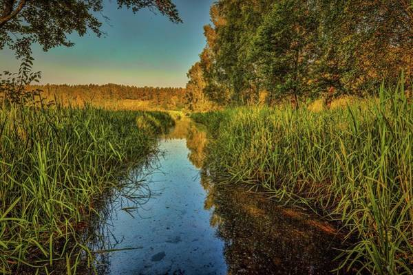 Photograph - Water Reflection #h5 by Leif Sohlman