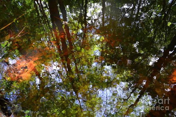 Wall Art - Photograph - Water Reflections by Angelika Heidemann