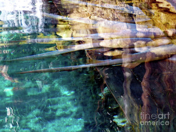 Photograph - Water Reflections by Francesca Mackenney
