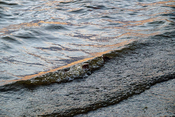 Photograph - Water Ripples 3 by Mike Murdock