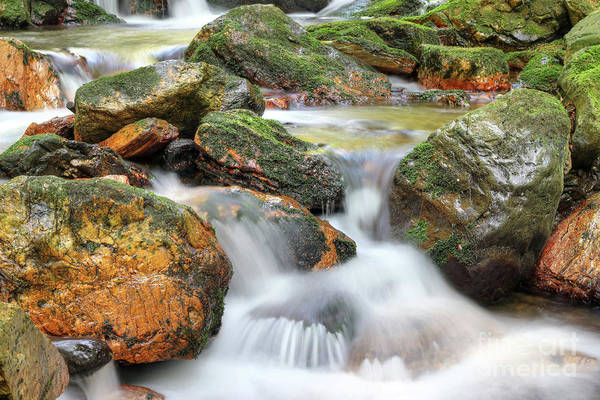 Wall Art - Photograph - Water Running Over Rocks - Long Exposure by Michal Boubin