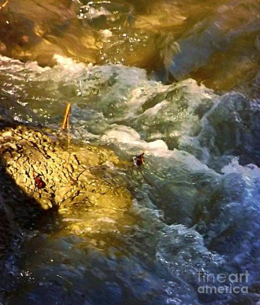 Photograph - Water Rush by David Neace