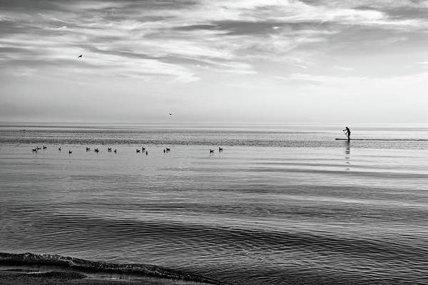 Sauble Beach Photograph - Water Walker Bw by Steve Harrington