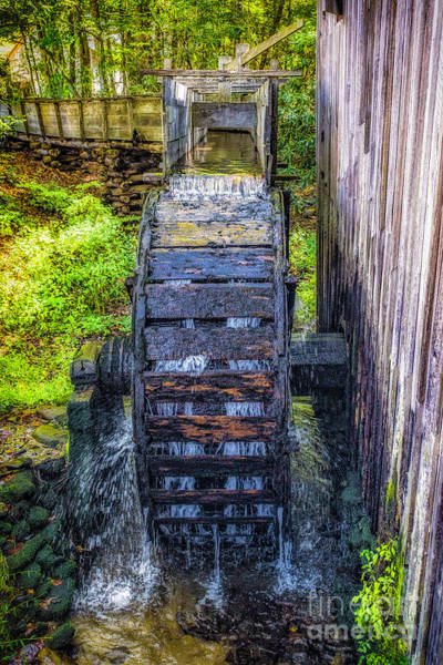 Photograph - Water Wheel-cades Cove by Nick Zelinsky