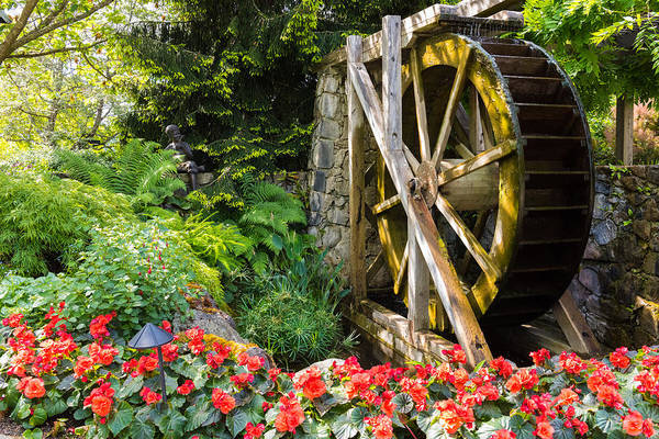 Photograph - Water Wheel by John Johnson