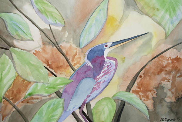 Painting - Watercolor - Agami Heron by Cascade Colors