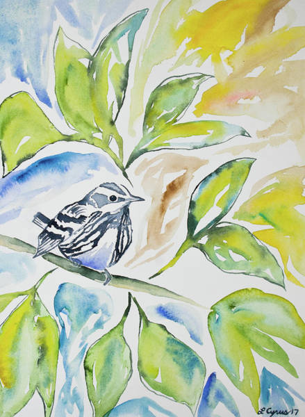 Painting - Watercolor - Black-and-white Warbler by Cascade Colors