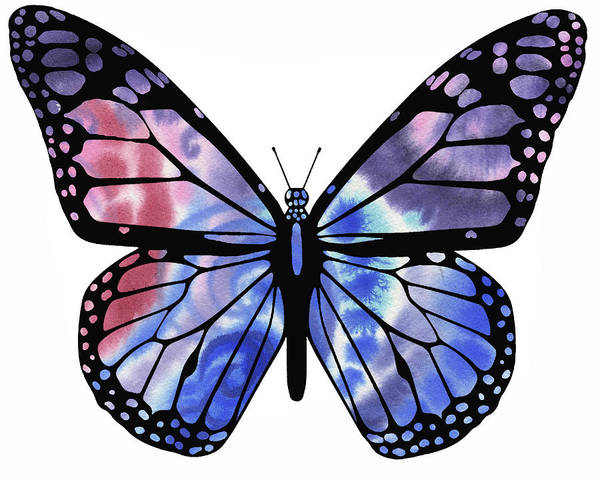 Wall Art - Painting - Watercolor Butterfly Blue And Purple by Irina Sztukowski