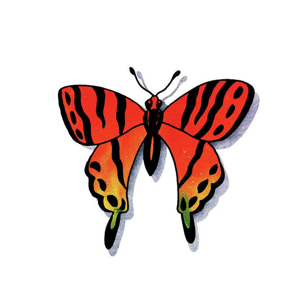 Painting - Watercolor Butterfly Red Yellow Green by Irina Sztukowski