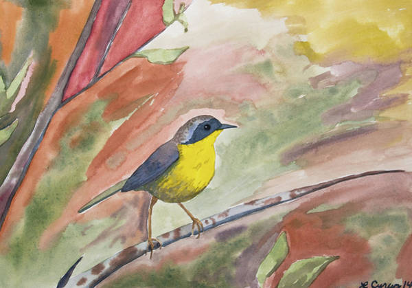 Painting - Watercolor - Common Yellowthroat by Cascade Colors