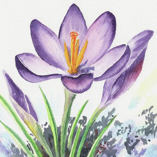 Wall Art - Painting - Watercolor Crocus Spring Flower Close Up by Irina Sztukowski