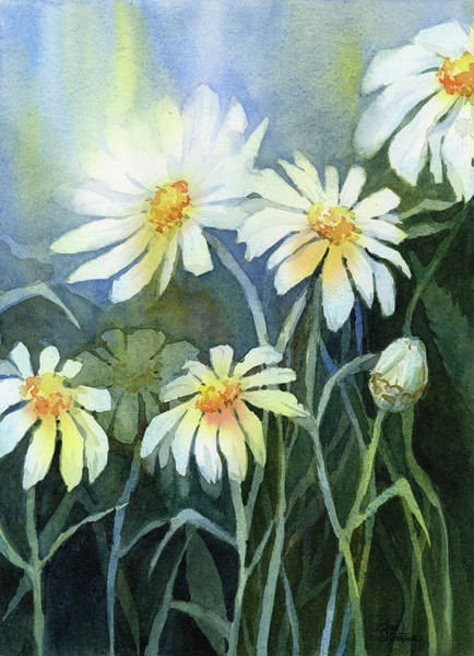 Wall Art - Painting - Daisies Flowers  by Olga Shvartsur