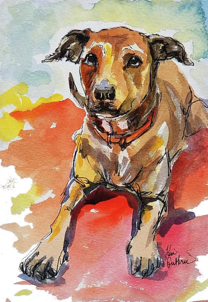 Wall Art - Painting - Watercolor Dog Pet Painting  by Kim Guthrie