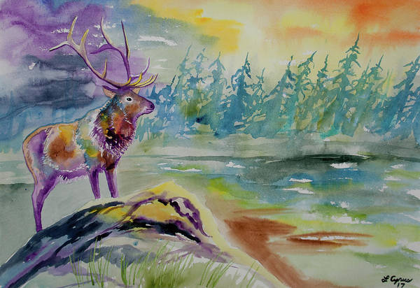 Painting - Watercolor - Elk In The Rockies by Cascade Colors
