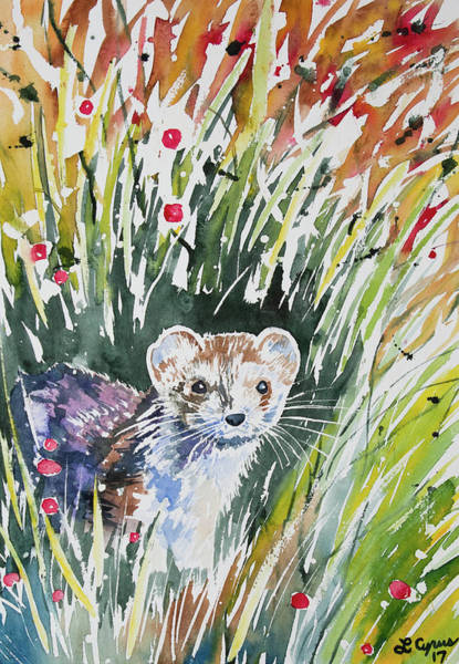 Painting - Watercolor - Ermine With Autumn Foliage by Cascade Colors