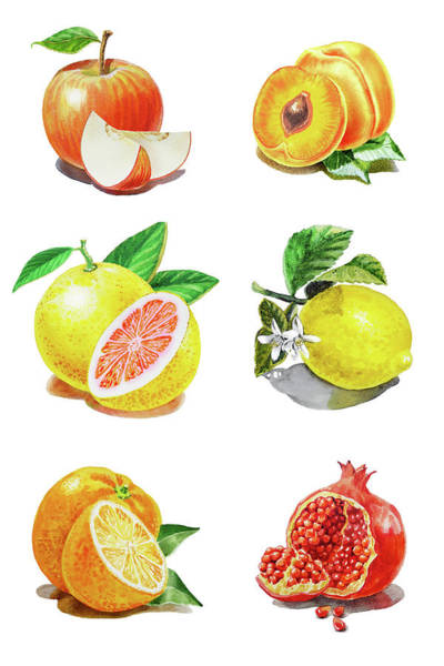 Wall Art - Painting - Watercolor Food Illustration Fruits by Irina Sztukowski