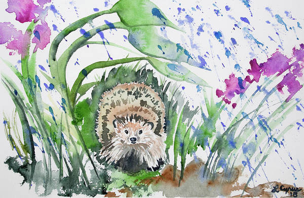 Painting - Watercolor - Hedgehog In The Rain by Cascade Colors