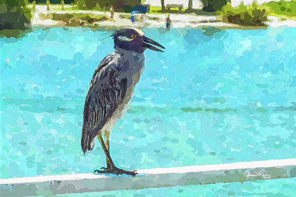 Photograph - Watercolor Herons 3 Of 4 by Susan Molnar