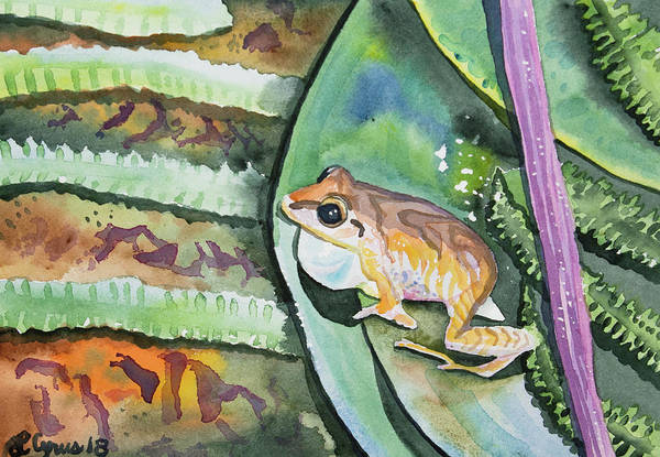 Painting - Watercolor - Maquipucuna Tree Frog 2 by Cascade Colors