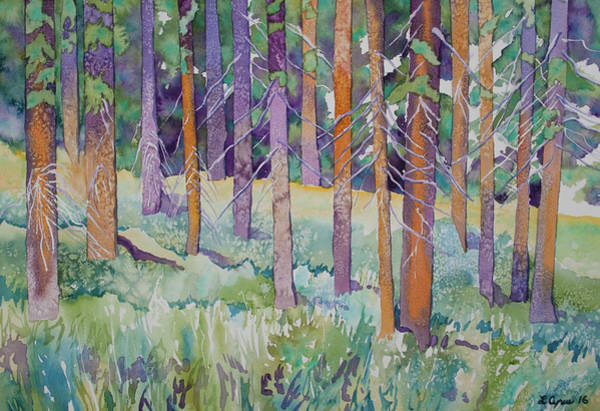 Painting - Watercolor - Mountain Pine Forest by Cascade Colors