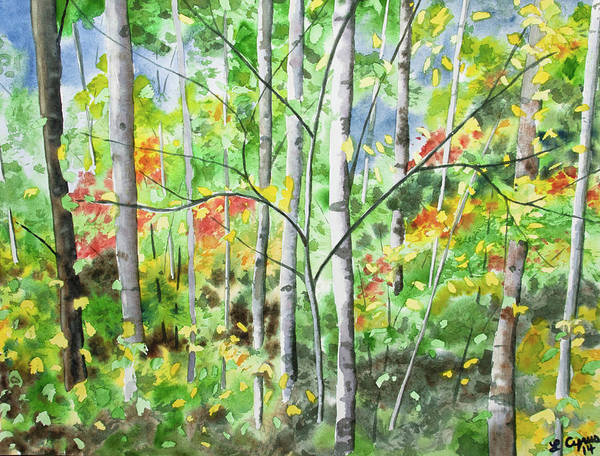 Painting - Watercolor - Northern Forest by Cascade Colors