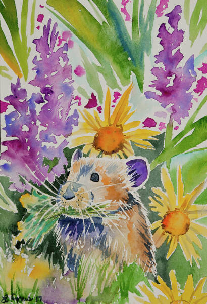 Painting - Watercolor - Pika With Wildflowers 2 by Cascade Colors