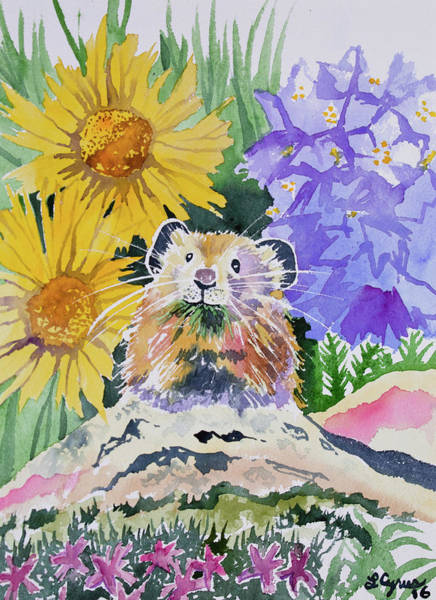 Painting - Watercolor - Pika With Wildflowers by Cascade Colors