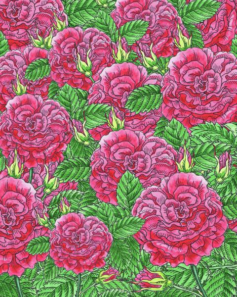 Painting - Watercolor Pink Rose Pattern by Irina Sztukowski