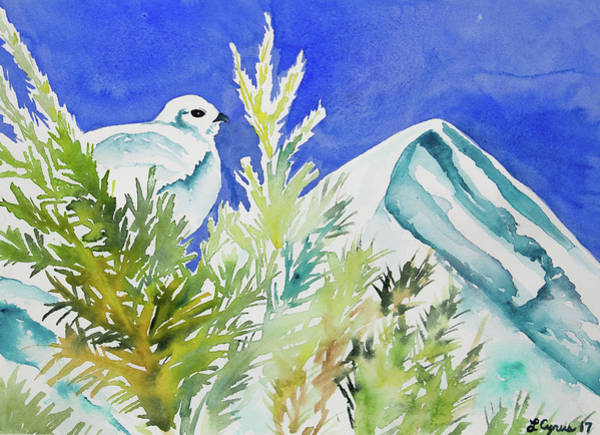 Painting - Watercolor - Ptarmigan And Mountain by Cascade Colors