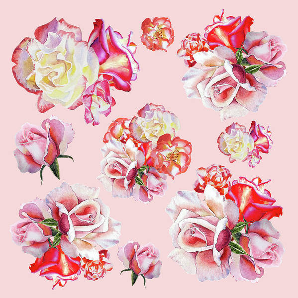 Full Bloom Painting - Watercolor Roses Pink Dance by Irina Sztukowski