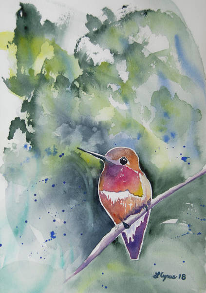 Painting - Watercolor - Rufous Hummingbird Portrait by Cascade Colors
