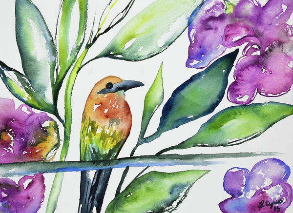 Painting - Watercolor - Rufous Motmot by Cascade Colors